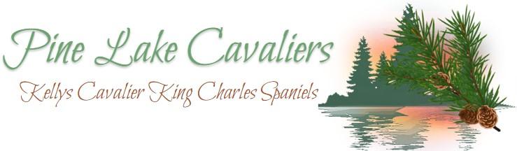 Pine Lake Cavaliers